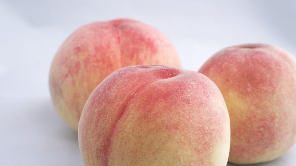 白桃の冷製パスタ